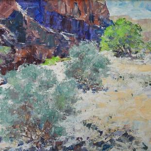 Desert Sage