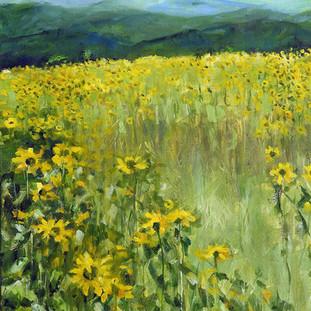 Saracina Sunflower