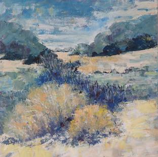 Blue Sage Hills