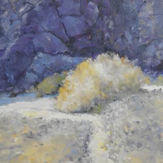 Lone Sage, Ladder Canyon