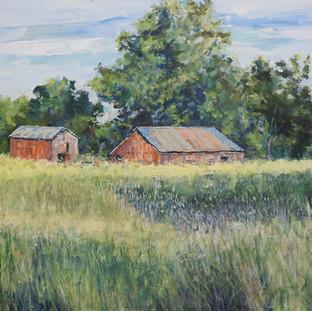 My Barn.jpg