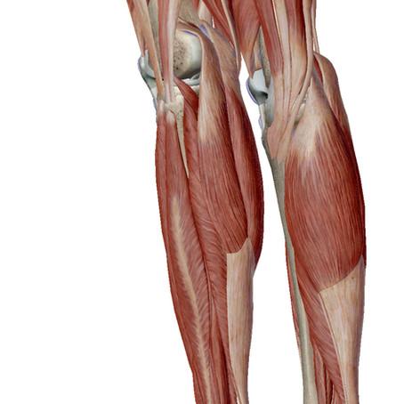 ふくらはぎは足首、足裏に非常に関係があります!