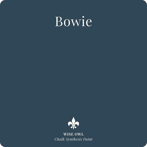 Bowie CSP