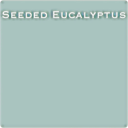 Seeded Eucalyptus OHE