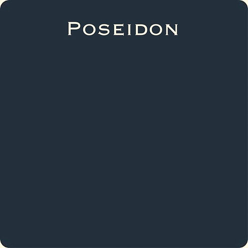 Poseidon OHE