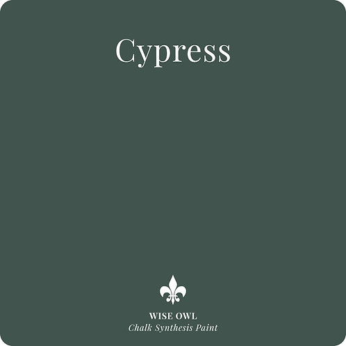 Cypress CSP