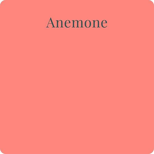 Anemone CSP
