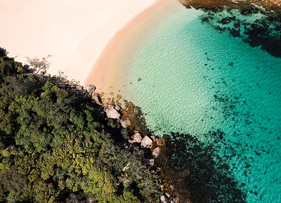 Shelly Beach - RLMY019