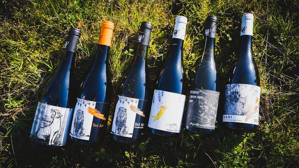 Coffret 6 bouteilles : découverte Terre Fauve