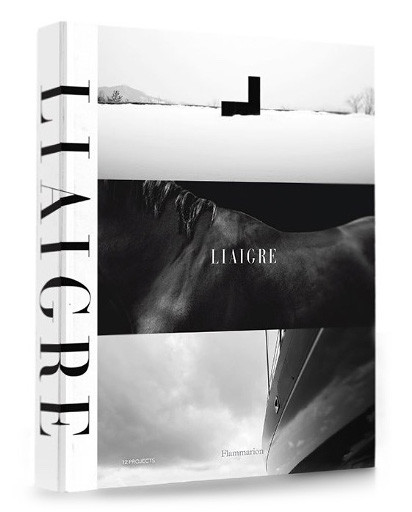 Liaigre book cover