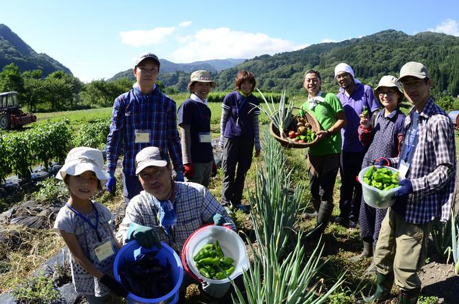 8月1日(火)~13日(日)  山村集落プチトリップ ~夏野菜収穫と小谷産草木染め~