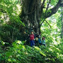 自然感察ハイキング