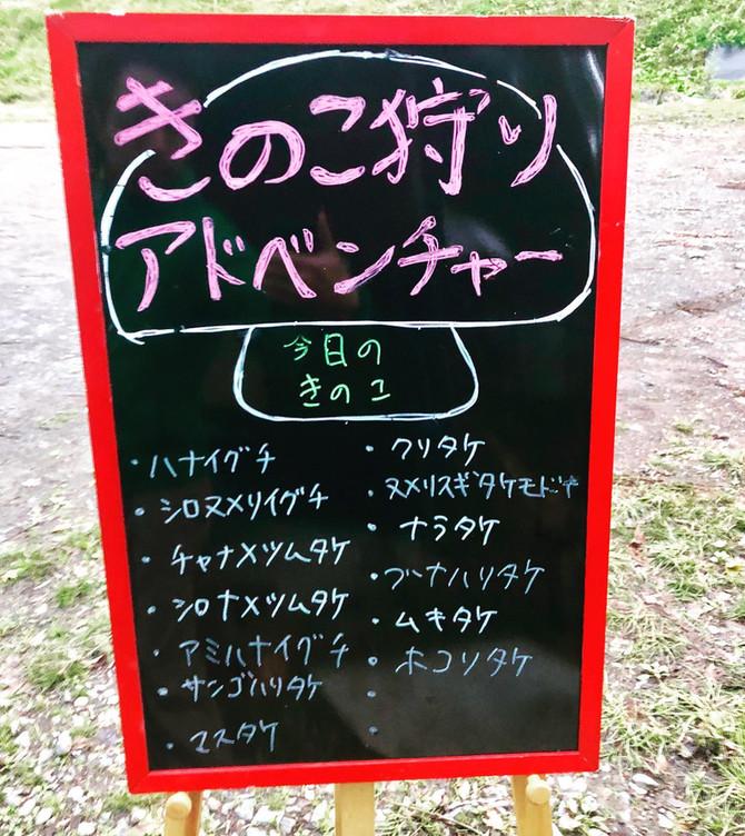 \きのこ狩りアドベンチャー延長開催決定!!/