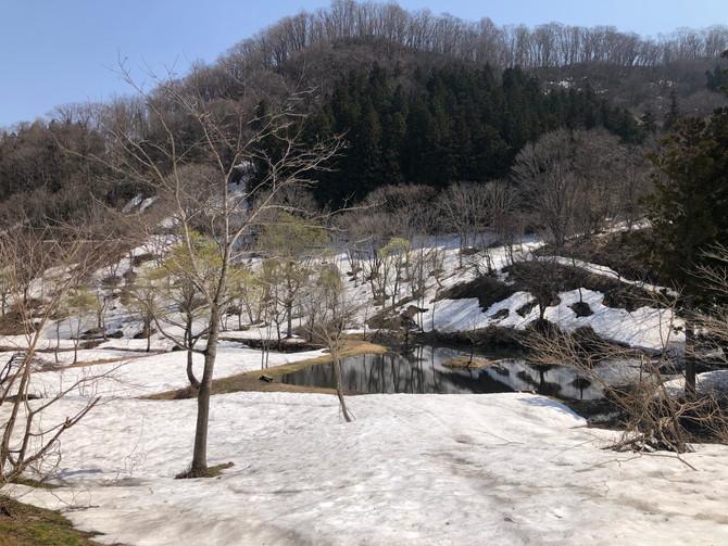残雪の「探険村」営業開始します🏕