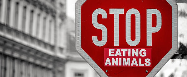 stop-eating-animals-sign.jpg