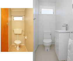 Toilet Before and After
