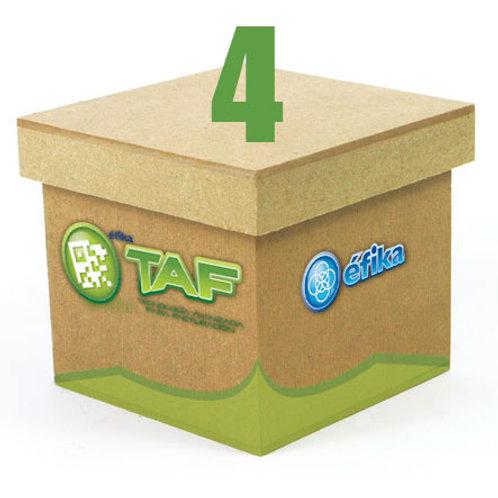 Paquete TAF 4
