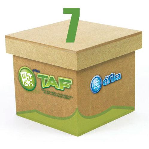 Paquete TAF 7