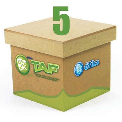Paquete TAF 5