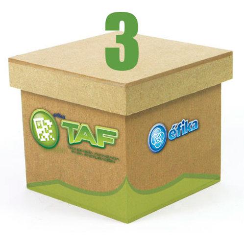 Paquete TAF 3