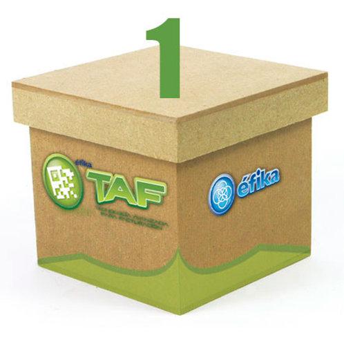 Paquete TAF 1