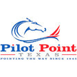 Tree Surgeon Pilot Point, TX