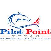 Pilot Point Tree Service