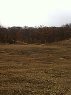 22 Acre Lot Clearing