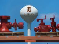 Tree Removal Justin Texas