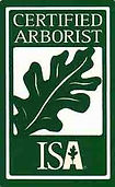 Certified Arborist in Addison Texas