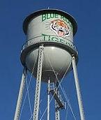 Tree Removal Blue Ridge Texas
