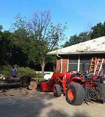 Tree Cutting Service