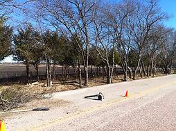 Lot Clearing on Roadside