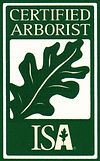 Certified Arborist in Denton Texas