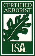 Certified Arborist in Lewisville Texas