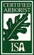 Certified Arborist in Grapevine Texas