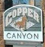 Tree Service Copper Canyon