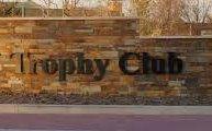 Tree Removal Trophy Club Texas