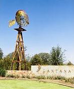 Lantana Tree Service
