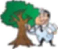 Rockwall Tree Surgeon