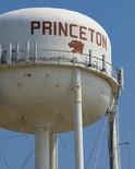 Tree Trimming Princeton, TX