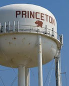 Land Clearing Princeton Texas