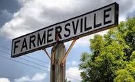 Tree Removal Farmersville, TX