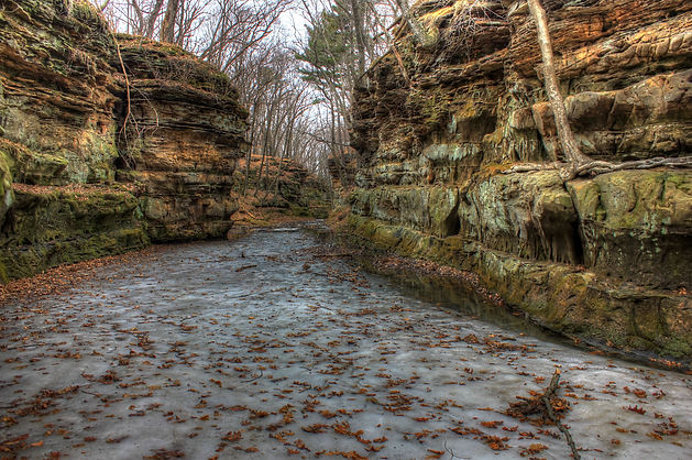 wisconsin-pewits-nest-natural-area-scene