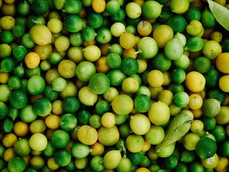 El dulce camino de  las exportaciones del  limón thaití colombiano