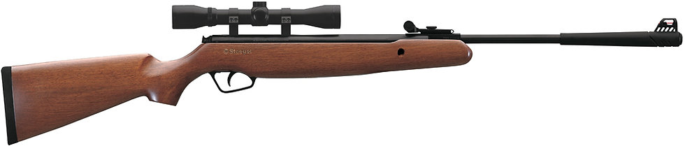 Stoeger X10 Wood .22 package