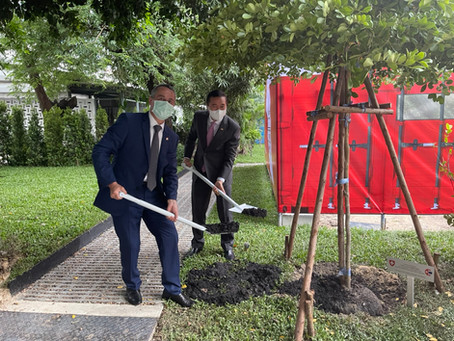 Inauguration tree for new STCC office in Swiss Embassy of Thailand.