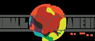 Scientific Vortex will participate in the Biennial of the Americas.