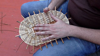 Weaving an Oval Base - Willow Basketry Tutorial