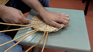 Willow Basketry: Adding uprights - Full Video Tutorial